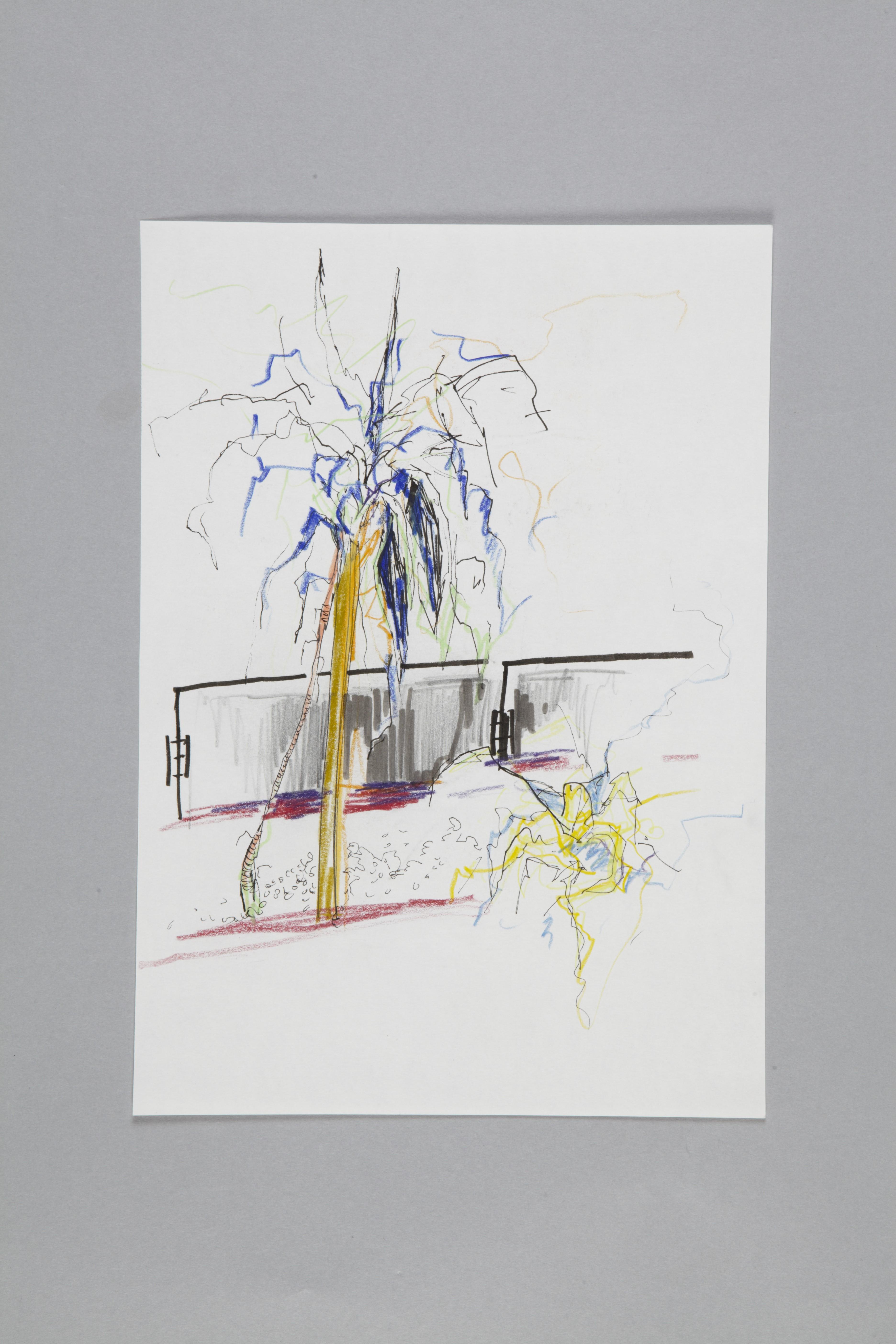 Color pencils and fineliner on paper | Kantinenpflanze II | 30×20 | 2017_Jule Sonnentag