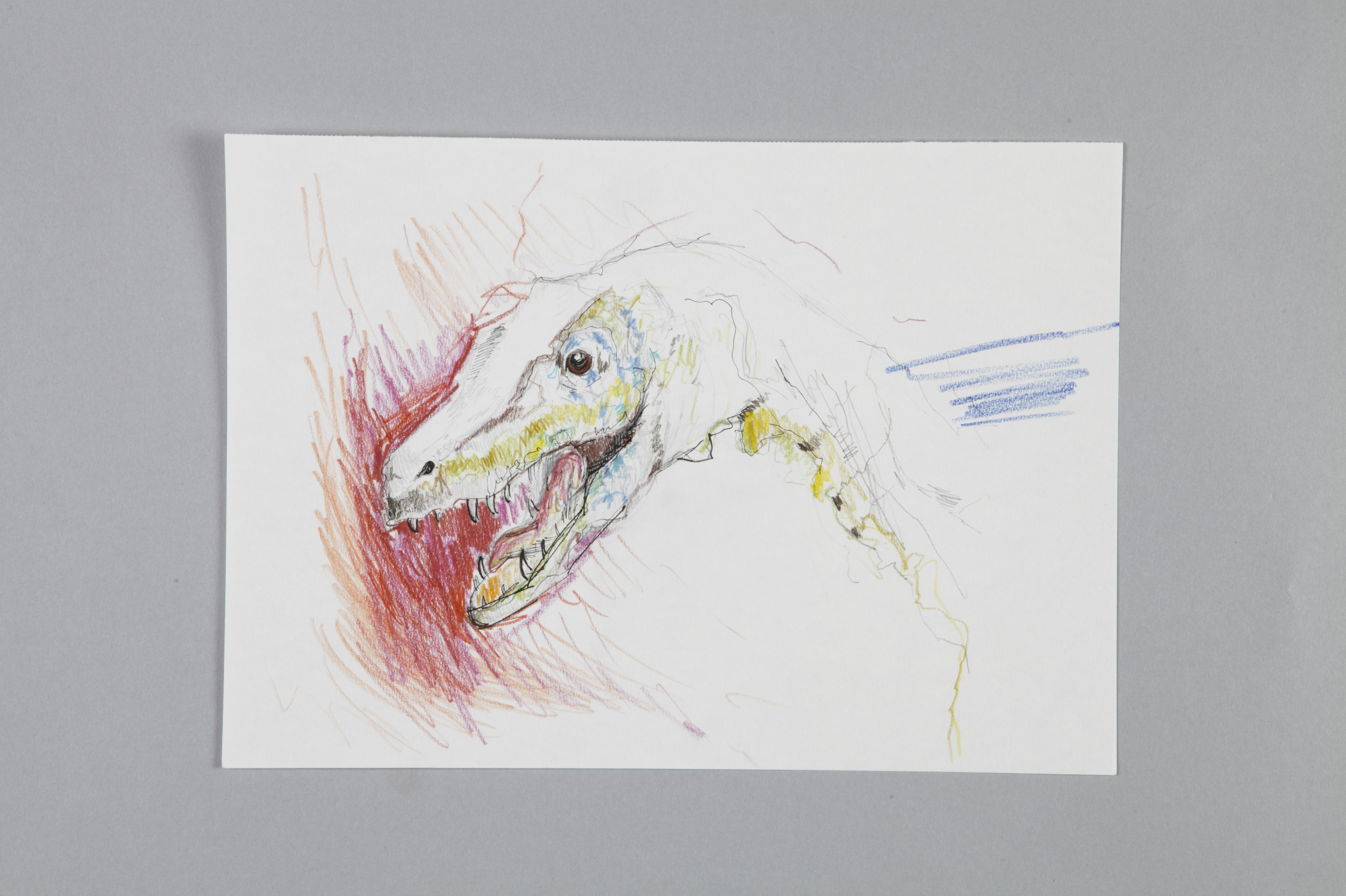 Color pencils and fineliner on paper | Dino | 30×20 | 2017_Jule Sonnentag
